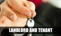 The Look at Anti-Social Behaviour with the help of Landlord and Tenants Solicitors